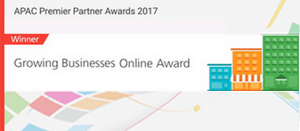 Google Growing Businesses Online Award 2017