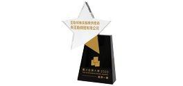 Outstanding Brand Award